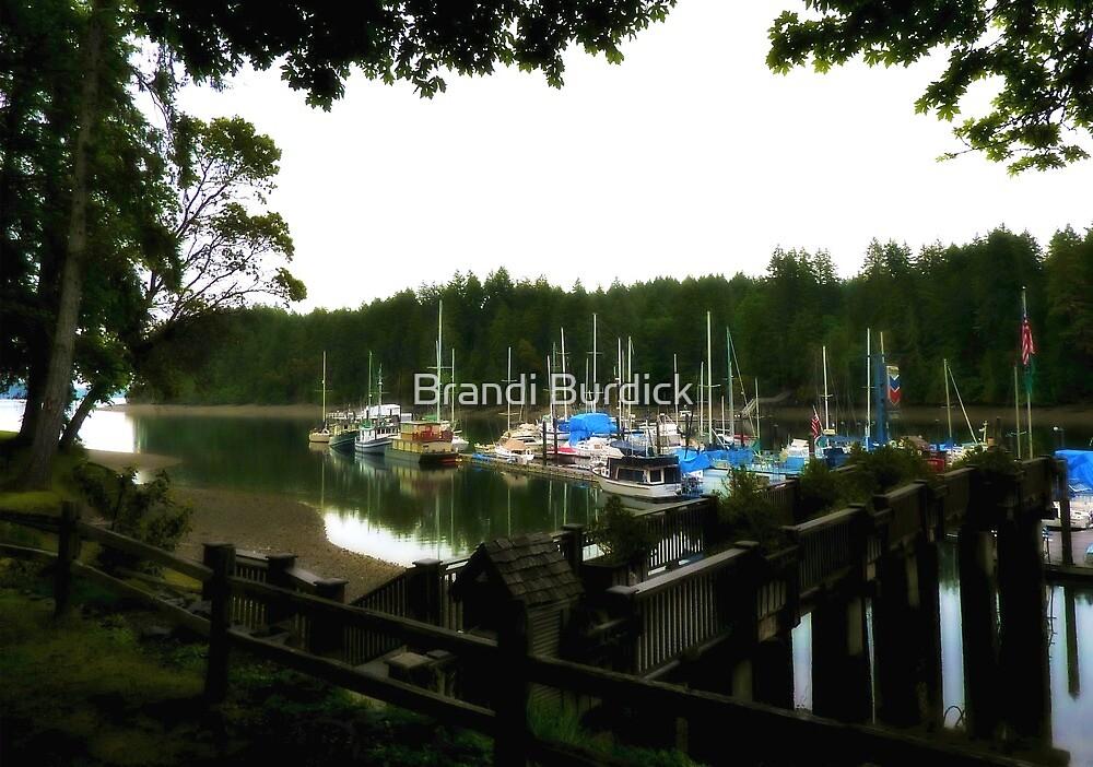 a marina of memories~ by Brandi Burdick