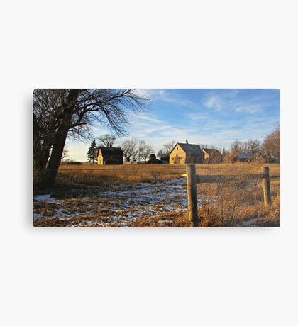 Down on Junior's Farm Metal Print