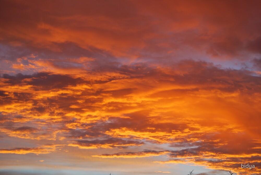 Sunset Clouds by bidya