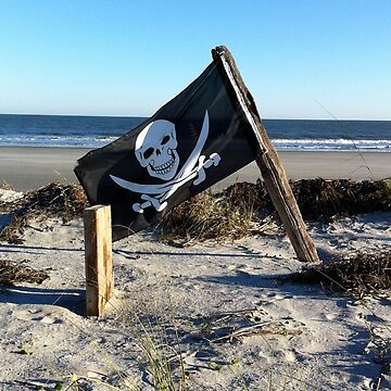 pirate flag by erhig