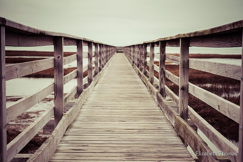 Gray's Beach Boardwalk, Barnstable, Cape Cod by Elizabeth Thomas