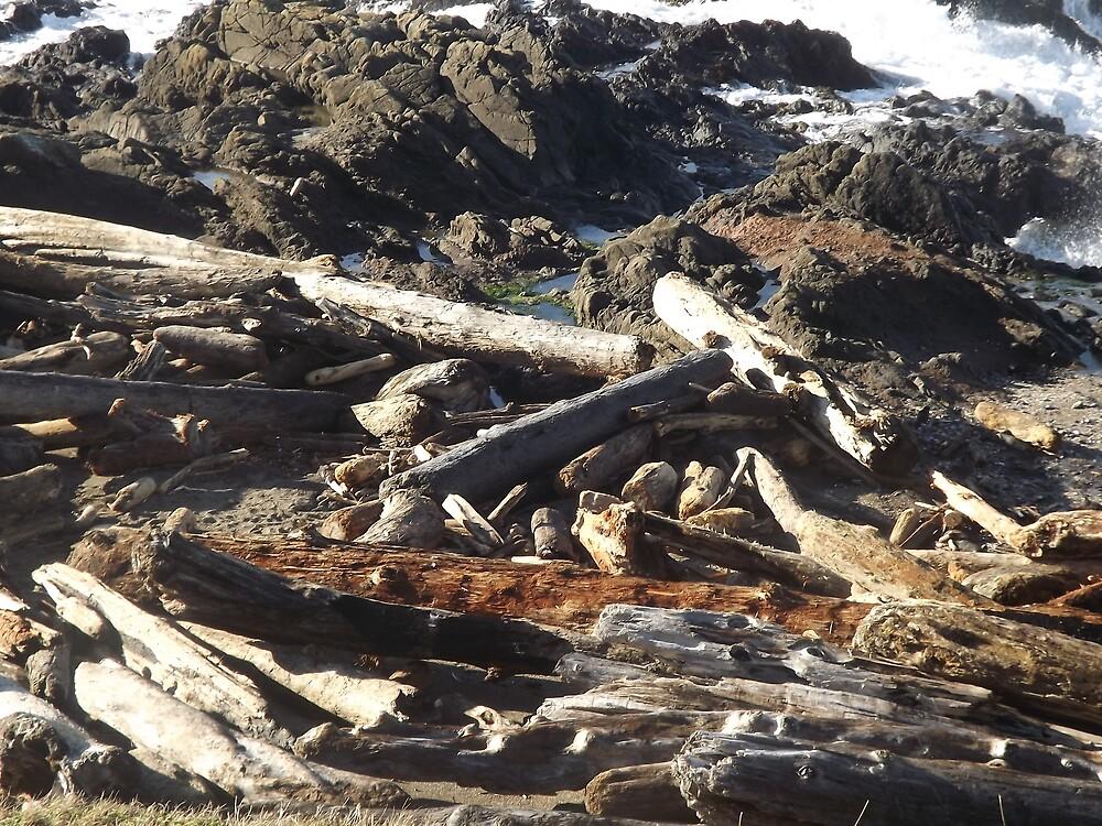 Ocean debree by PhyllisTown