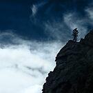 Black Cliff by Dana DiPasquale