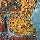 topographic map - eastern seaboard - USA by Lynne Prestebak