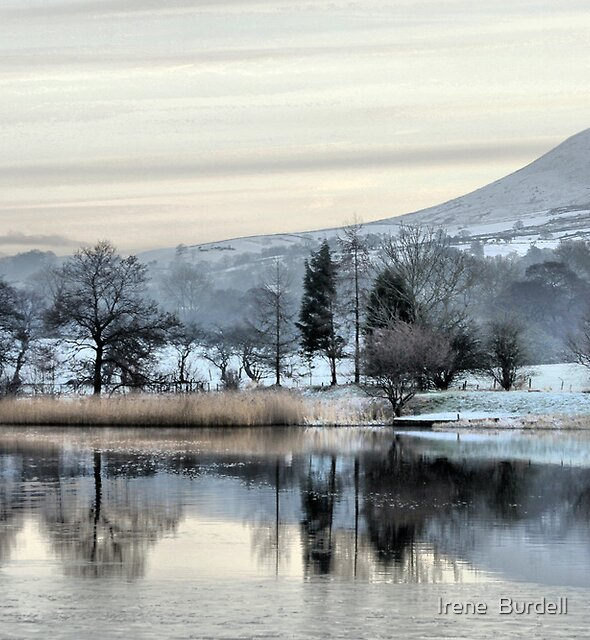 Pendle View in the snow  by Irene  Burdell