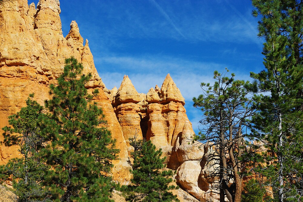Spectacular rock towers, Bryce by Claudio Del Luongo