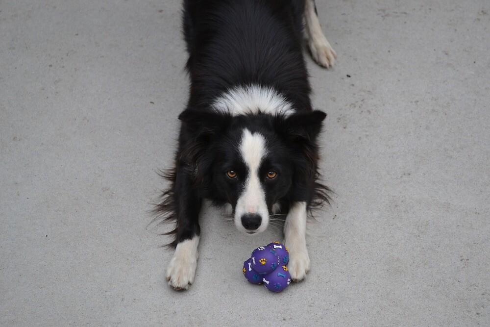 Throw it. now. by jarrrod