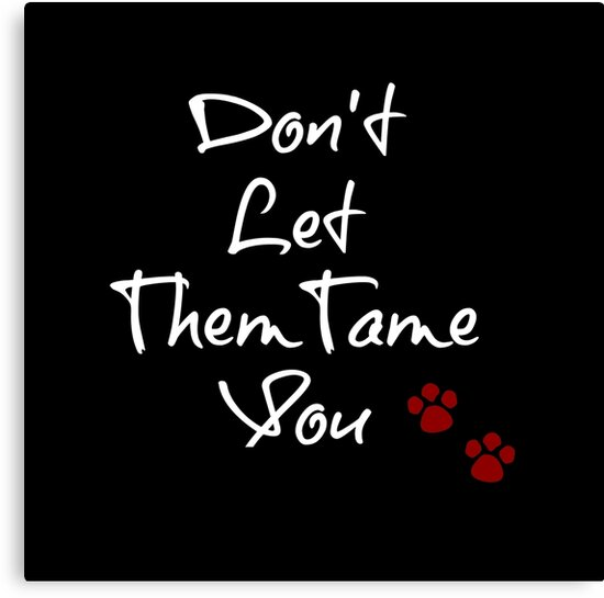 Don't Let Them Tame You - Typography Design by avalonmedia