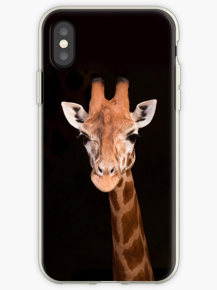 Giraffe iPhone by ImagesbyDi