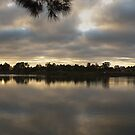 Shoalhaven Dawn by mark7b