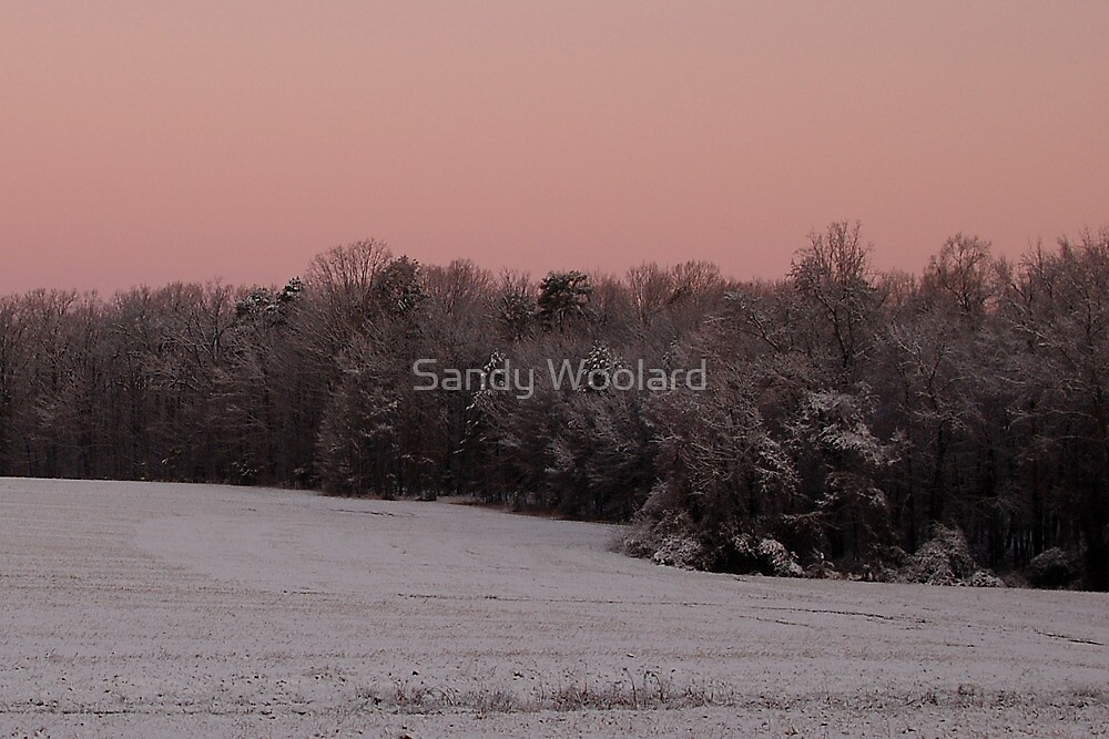 First Snow for the South by Sandy Woolard