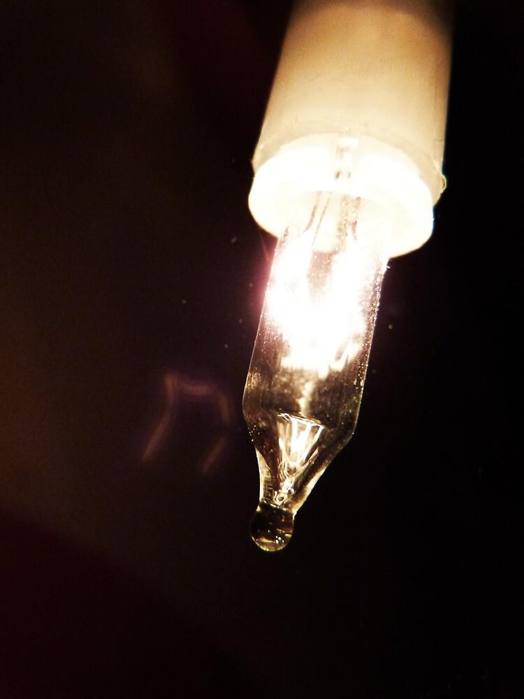 White Fairy Light by colettelydon
