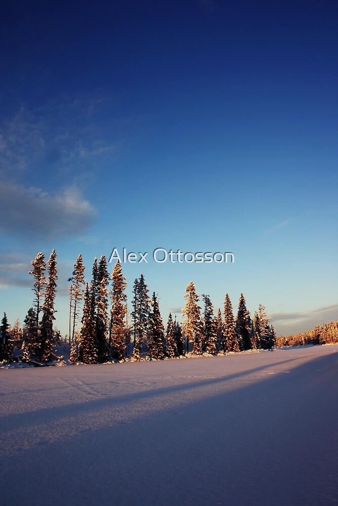 Winter Day by Alex Ottosson