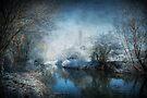 Winter Wonderland by Svetlana Sewell