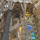 Med Cruise - Barcelona 1 by janrique