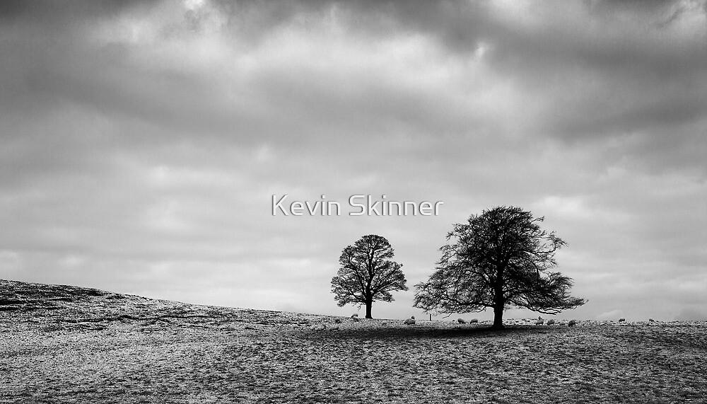 House Of Binns - Downhill by Kevin Skinner