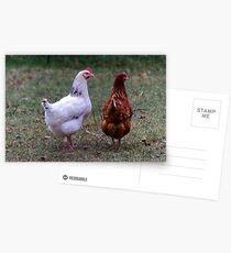 Free Range Postcards