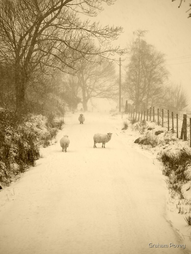 Another Winter by Graham Povey