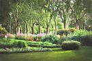 Secret Garden  (GO) by Raymond Warren