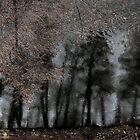 Winter Melancholia .... by 1morephoto