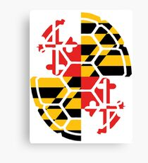 Maryland Flag Shell Canvas Print