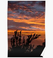 Fiery suburban sunset Poster
