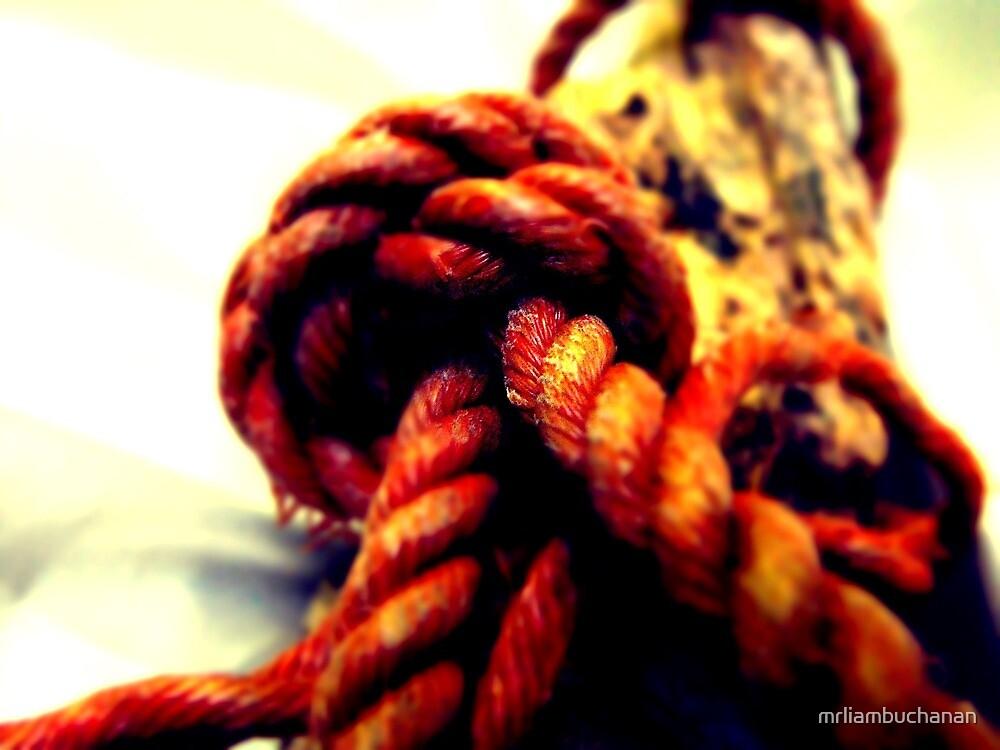 Inside the knot by mrliambuchanan