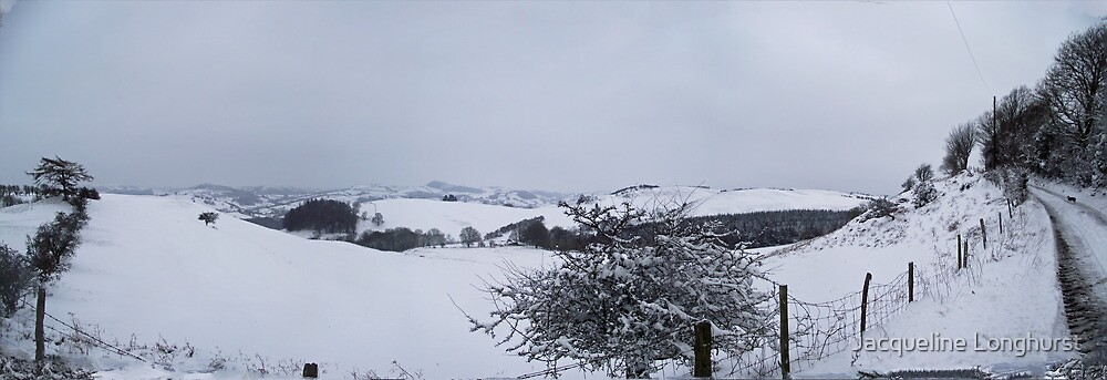 Snow Scene in the hills above Llanfyllin Powys by Jacqueline Longhurst