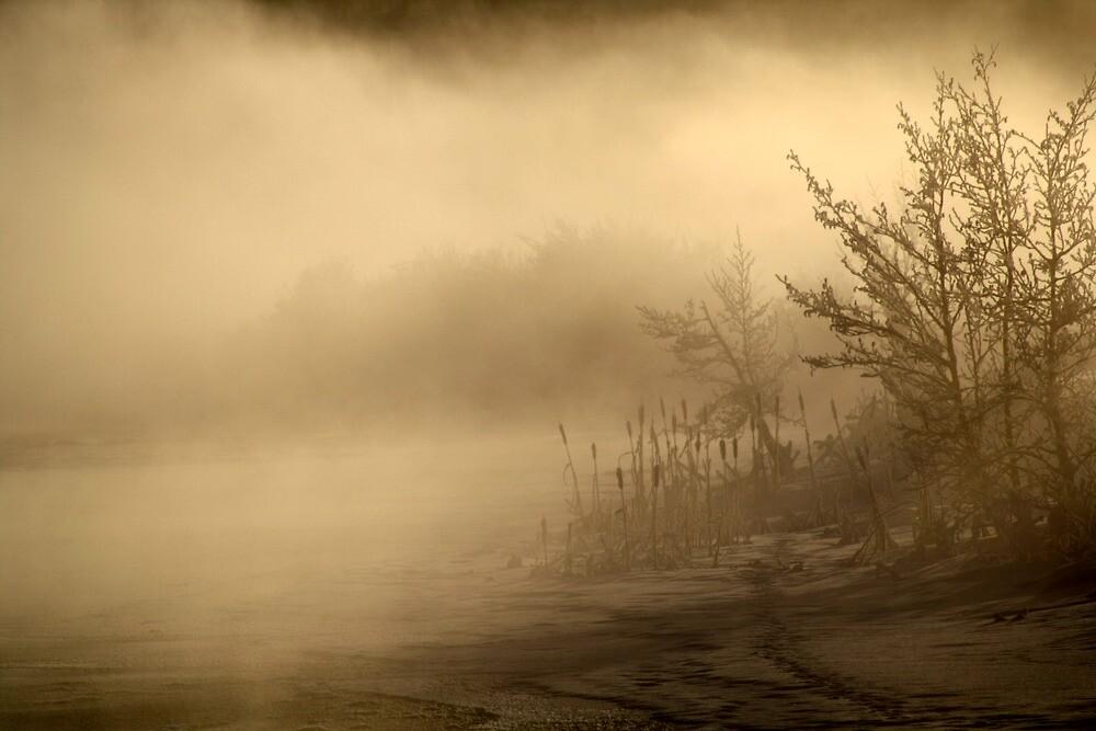 20.1.2013: Frozen Stream III by Petri Volanen