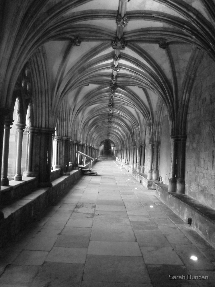 Cathedral Cloisters by Sarah Duncan