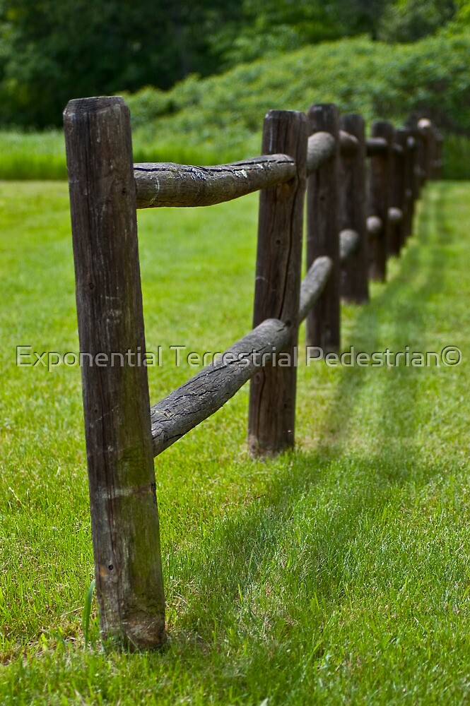 Fence by Exponential Terrestrial Pedestrian©