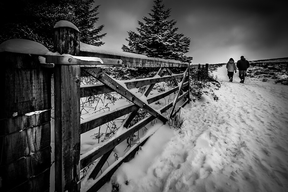 Winter walk by Andrew Cooper