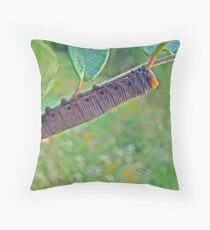 Snowberry Clearwing Hawk Moth Caterpillar - Hemaris diffinis Throw Pillow