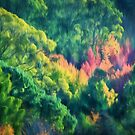 Autumn in the Hills   (GO) by Ray Warren