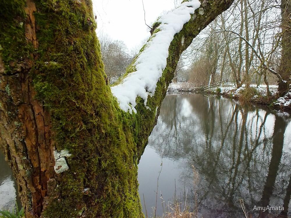 Mossy Tree by AmyAmata