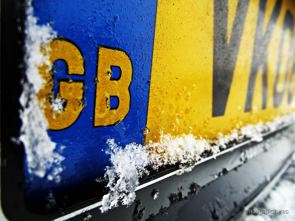 Snowy Numberplate by mollyspictures