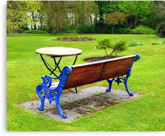An Irish Country House Garden by Fara