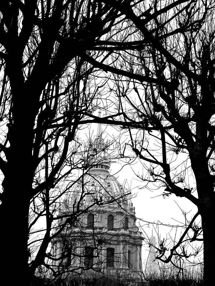 Dôme des Invalides behind the tree silhouettes by bubblehex08