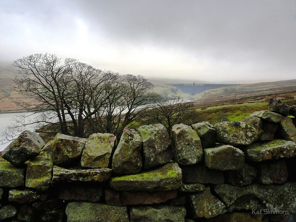 Nidderdale Winter by Kat Simmons