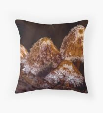 CRYSTALIZED Throw Pillow