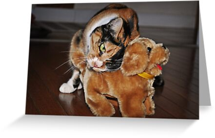Cat Embraces Pet Dog Toy by emcreates