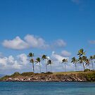 Kapalua Beach, Maui, Hawaii by Barb White
