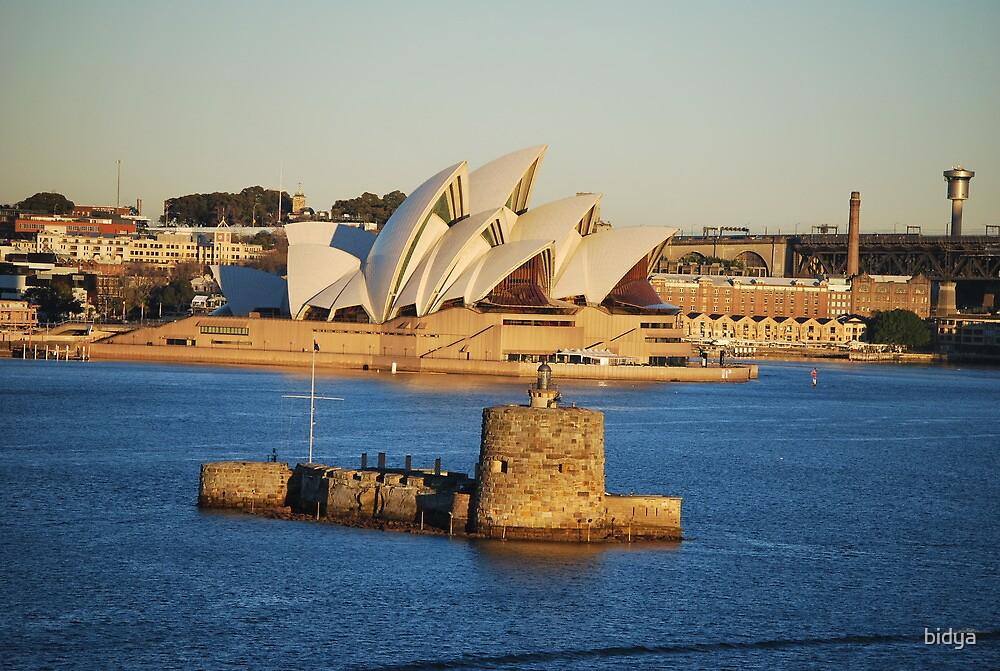 "Sydney Harbour ""Rotnest"" by bidya"