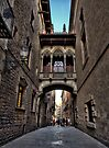 Enchanted Streets of Barcelona by Yelena Rozov