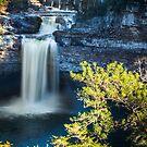 DeSoto Falls by Judy Frederick