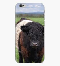 Belted Galloway iPhone Case