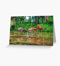 HDR Greeting Card