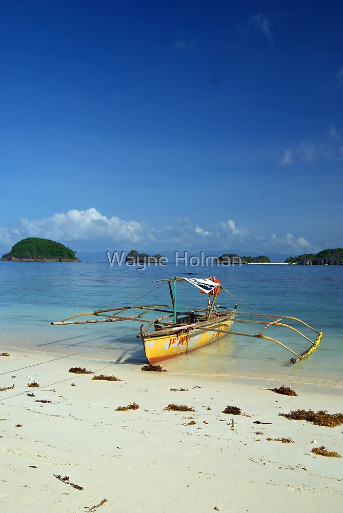 Paradise Found by Wayne Holman