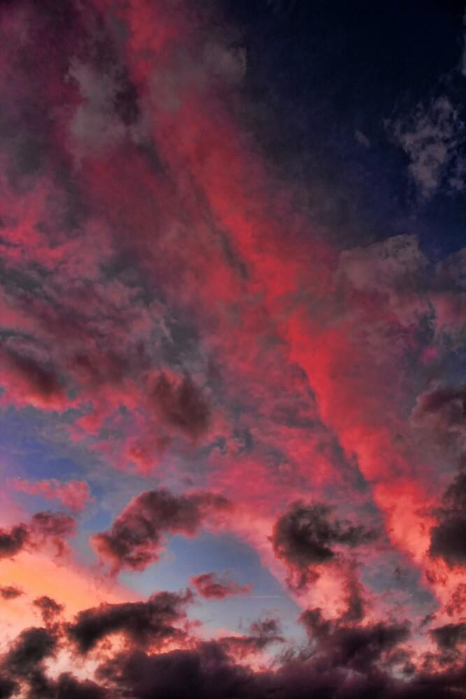 Cloud 20121024-28 by Carolyn  Fletcher