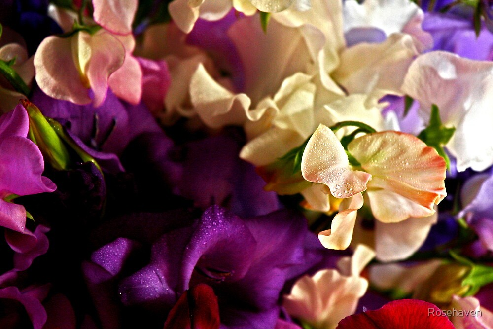 """""""Bouquet of Love """" by Rosehaven"""